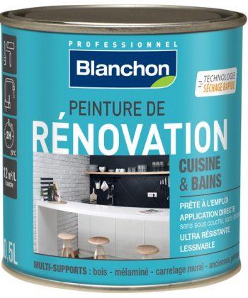Peinture de Rénovation Cuisine et Bains